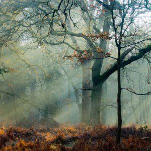 Running Images Photography Landscape Portfolio